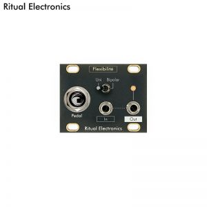 Ritual Electronics Flexibilité 1U